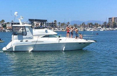 marina del rey yacht charter & boat rentals searay 45 motor yacht