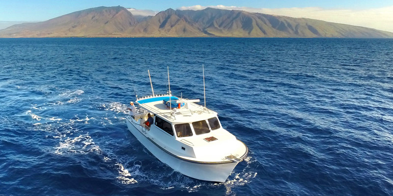 Maui private fishing onboat inc for Deep sea fishing marina del rey