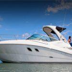 marina del rey los angeles yacht charter boat rentals searay 280