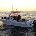 Marina del Rey private whale watching service