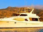 Express Cruiser Yacht Yacht Rentals in Marina del Rey