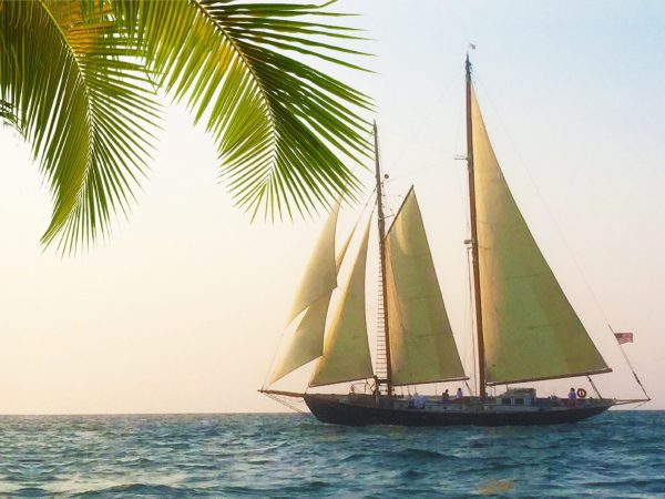 Monohull sailboat Yacht Rentals in Key West