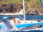 Yacht Rentals Maalaea Harbor, Maui