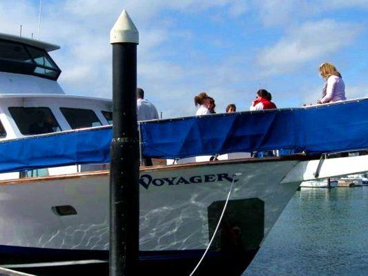 Berkeley Yacht Rentals