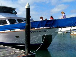Party Motor Yacht Yacht Rentals in Berkeley